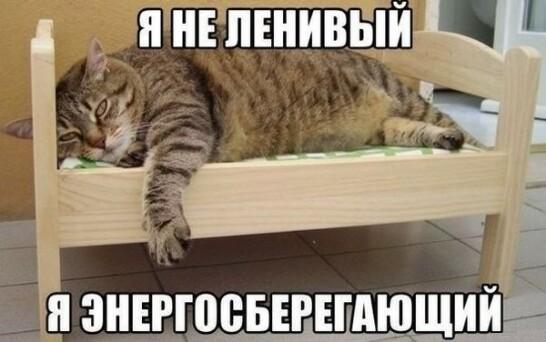 О, КотЭ!)) - Страница 7 Pic?url=http%3A%2F%2Fcontent-19.foto.my.mail.ru%2Fcommunity%2Fprikolprikol1%2F_groupsphoto%2Fi-2240